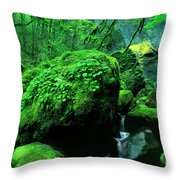 Elowah Falls 2 Columbia River Gorge National Scenic Area Oregon Throw Pillow