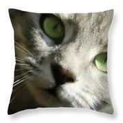 Elsie Throw Pillow