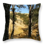 Elyon's Doorway Throw Pillow