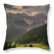 Embedded Throw Pillow