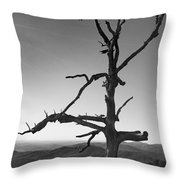 Embrace With Open Arms Throw Pillow