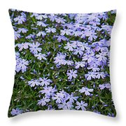 Emerald Blue Creeping Phlox Throw Pillow