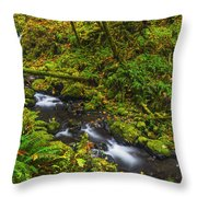 Emerald Falls And Creek In Autumn  Throw Pillow