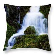 Emerald Falls Throw Pillow
