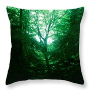 Emerald Glade Throw Pillow