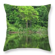 Emerald Green Reflections Throw Pillow