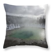 Emerald Green Spring Throw Pillow