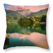 Emerald Mirror Throw Pillow