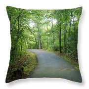 Emerald Trail Throw Pillow