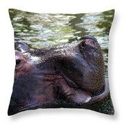Emerged Throw Pillow