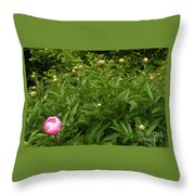 Emergence        Peony         May            Indiana Throw Pillow