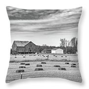 Emergence _ The Hues Of Spring Bw Throw Pillow