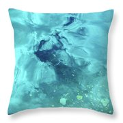 Water Horse Throw Pillow