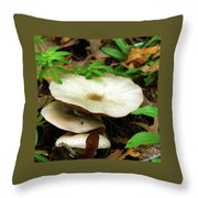 Emerging From The Undergrowth Throw Pillow