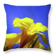 Emerging Into The Light II Throw Pillow