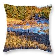 Emerging Marsh Throw Pillow