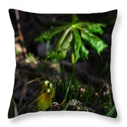 Emerging Mayapples Buffalo National River Throw Pillow
