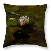 Emerging One Throw Pillow