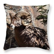 Emerging Ram Throw Pillow