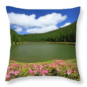 Empadadas Lakes Throw Pillow