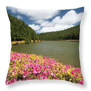 Empadadas Lakes II Throw Pillow