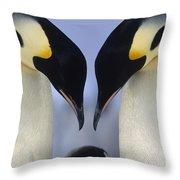Emperor Penguin Family Throw Pillow