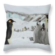 Emperor Penguin Landscape Throw Pillow
