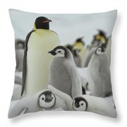 Emperor Penguin Pals 2 Throw Pillow