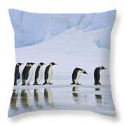 Emperor Penguins Throw Pillow