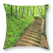 Empire Bluffs Trail Steps In Michigan Throw Pillow