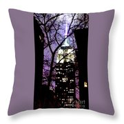 Empire State From Madison Park 1 Throw Pillow