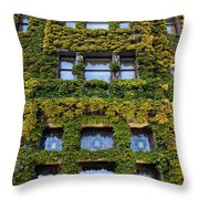 Empress Hotel Windows Throw Pillow