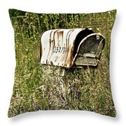 Empty Mailbox At 35476 Throw Pillow
