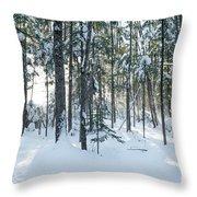 Enchante Throw Pillow