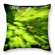 Enchanted Forest 6 Throw Pillow