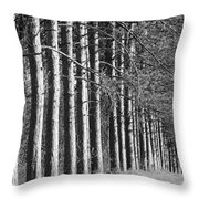 Enchanted Forest Throw Pillow by Luke Moore