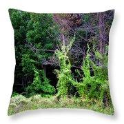 Enchanted Throw Pillow
