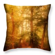 Enchanted Path 2 - Allaire State Park Throw Pillow