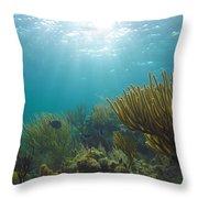 Enchanted Seas Throw Pillow