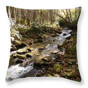 Enchanted Stream - October 2015 Throw Pillow