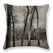 Home In The Wood Throw Pillow