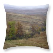 Enchantment Of The September Grasslands Throw Pillow