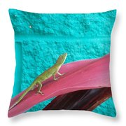 Encounter Throw Pillow