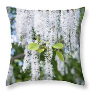 Encyclopedia Of Spring Image 7 Throw Pillow