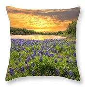 End Of A Bluebonnet Day Throw Pillow