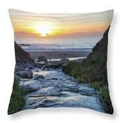 End Of The Road - Creek Runs Into Pacific Ocean At Big Sur Throw Pillow