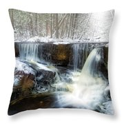 Enders Ice Throw Pillow