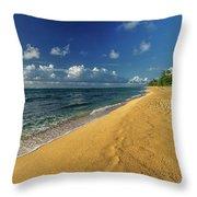 Endless Beach Throw Pillow