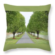 Endless  Country Road Throw Pillow