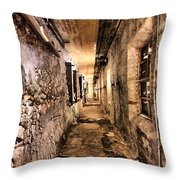 Endless Decay Throw Pillow by Andrew Paranavitana
